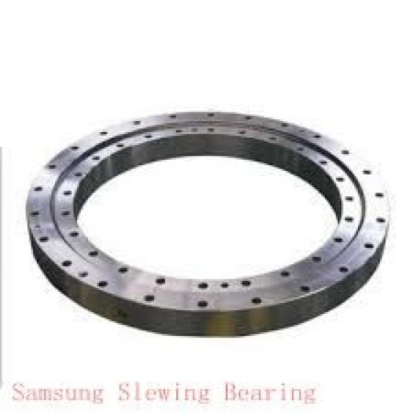 slewing ring turntable bearing for handling system equipment #1 image