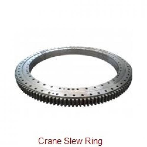 65x160x25mm Slewing Bearing outer-geared customized type #1 image