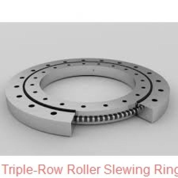 slewing ring for boat lifting gantry crane #1 image