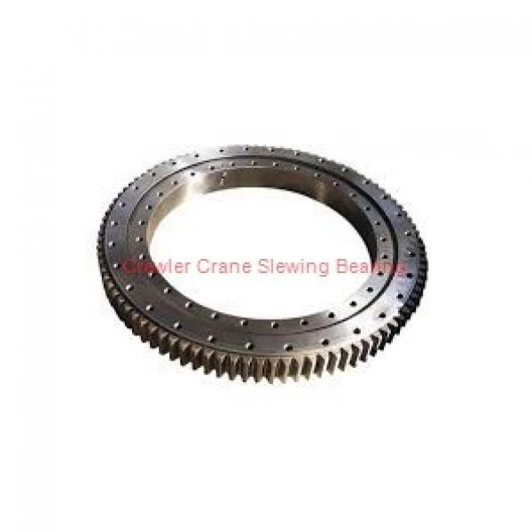 Slewing Bearing Rings for Tower, Onshore and Offshore Crane #1 image
