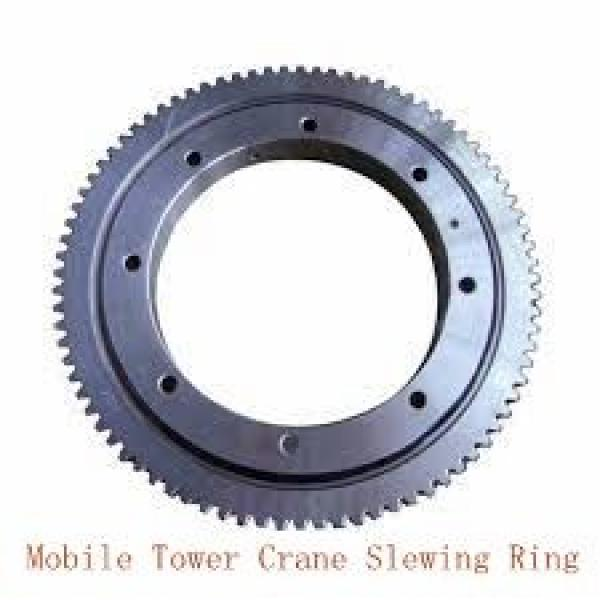 Single Row Four Point Contact Ball Slewing Ring Bearings #1 image